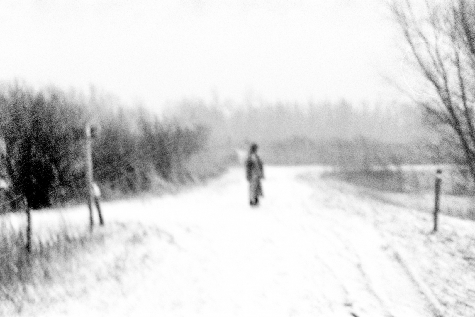 Woman in Snow III (2021)